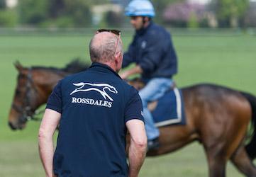 Mike Shepherd assessing racehorses on Newmarket Heath